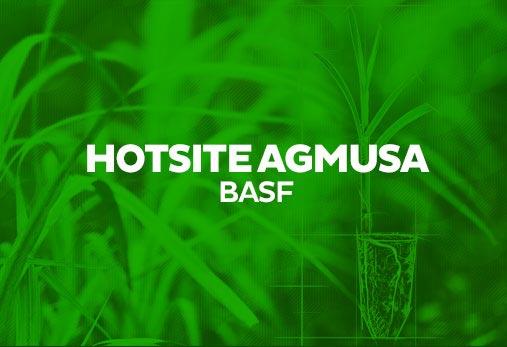 Basf - Agmusa