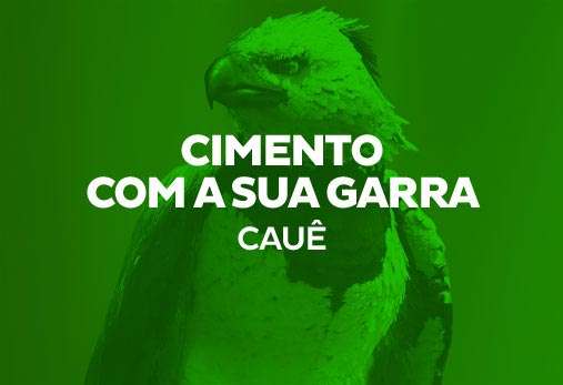 Cauê- Gavião