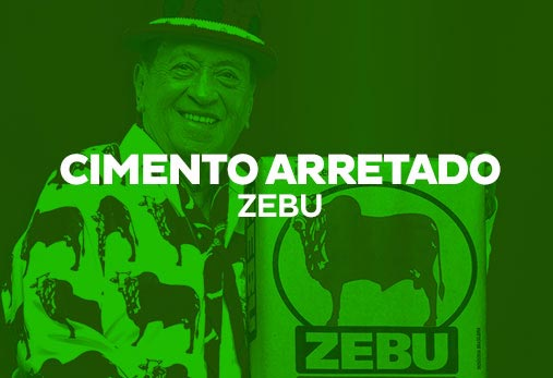 Intercement - Zebu